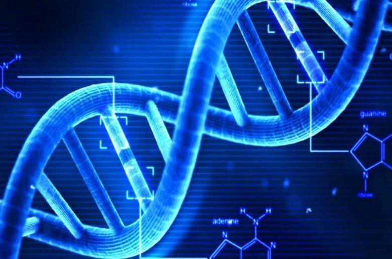ADN antigua Asia