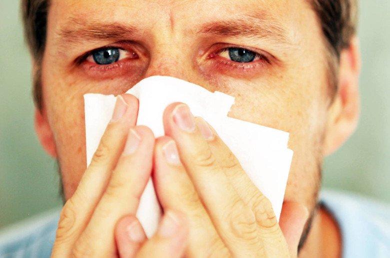 Acaros del polvo. alergias