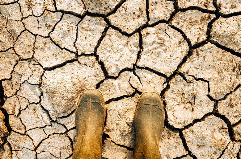 Lucha cambio climatico